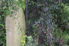 Graveyard before clearance in 2008