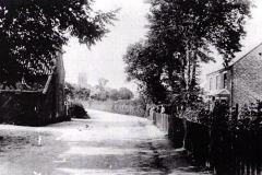 Black Street, Martham