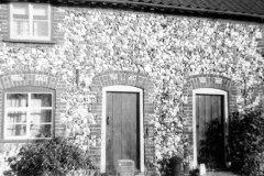 Stone Cottages, Cess. Home of John Turner