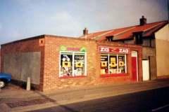 Zig Zag Toy Shop, Repps Road (1988-2000)