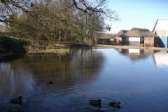 Moregrove pond
