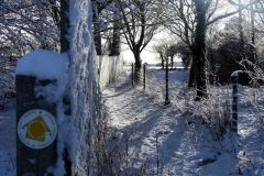 Moregrove footpath 2009 in snow