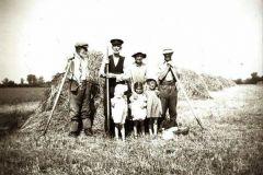Common Farm haymaking c1947