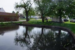 Back_Lane_pond_30_4_2012-001