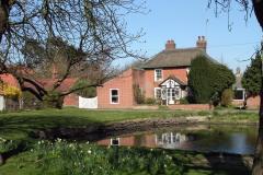 Braceys-pond