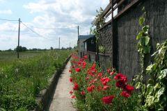 2009 bungalows path
