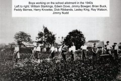 First-School-allotments