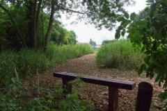 Common-Road-smee-2010-016