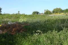 Staithe-Road-site-before-clearance-for-new-scout-hut.-2011-001