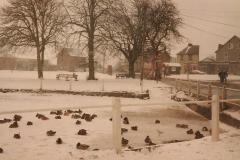 1991 Chapmans-pond-frozen