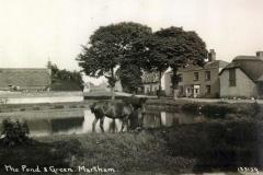 1940 Horse-by-pond